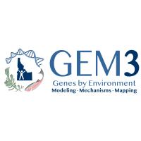 GEM3 logo